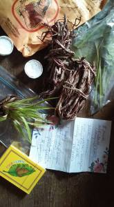 la botanica items